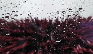 Чем лучше мыть профиль и стекла пластиковые окон без разводов ?