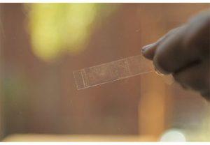 Чем можно отмыть скотч от пластика: уход за окном и запрещённые средства